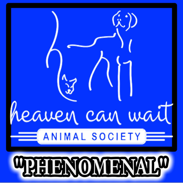 "HEAVEN CAN WAIT ANIMAL SOCIETY - LAS VEGAS - ""PHENOMENAL"""