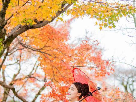 京散策-円山公園