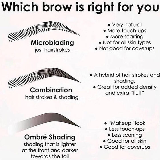 differences between brows.jpg