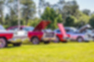bigstock----Ford-Galaxie-Skyliner---2431