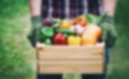 bigstock-Farmer-Holds-In-His-Hands-A-Wo-