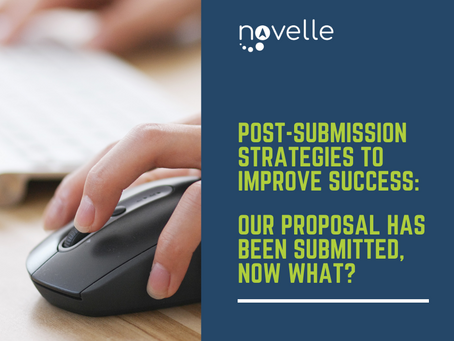 Post-submission Strategies to Improve Success: Our Proposal has been Submitted, Now What?