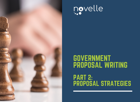 Government Proposal Writing: Proposal Strategies