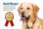 nutriscan-dog.jpg