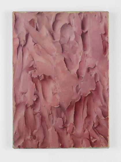 Damien Meade - Untitled 2017 - Oil on Li