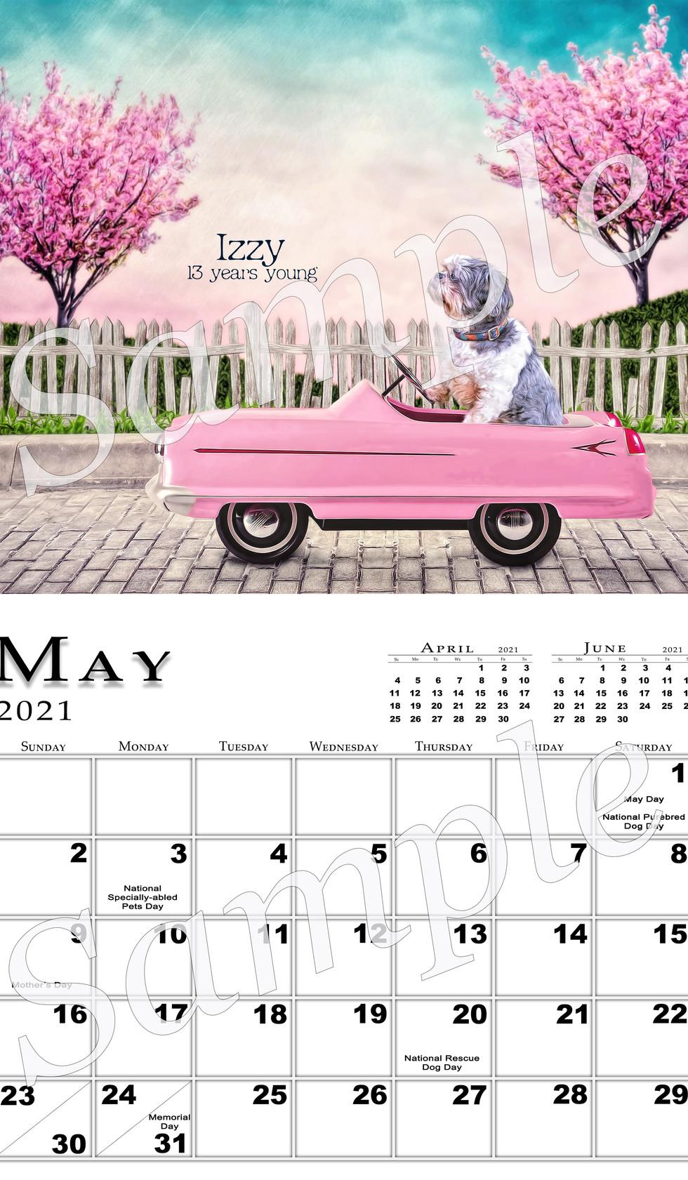 May 2021 Full Page Sample.jpg