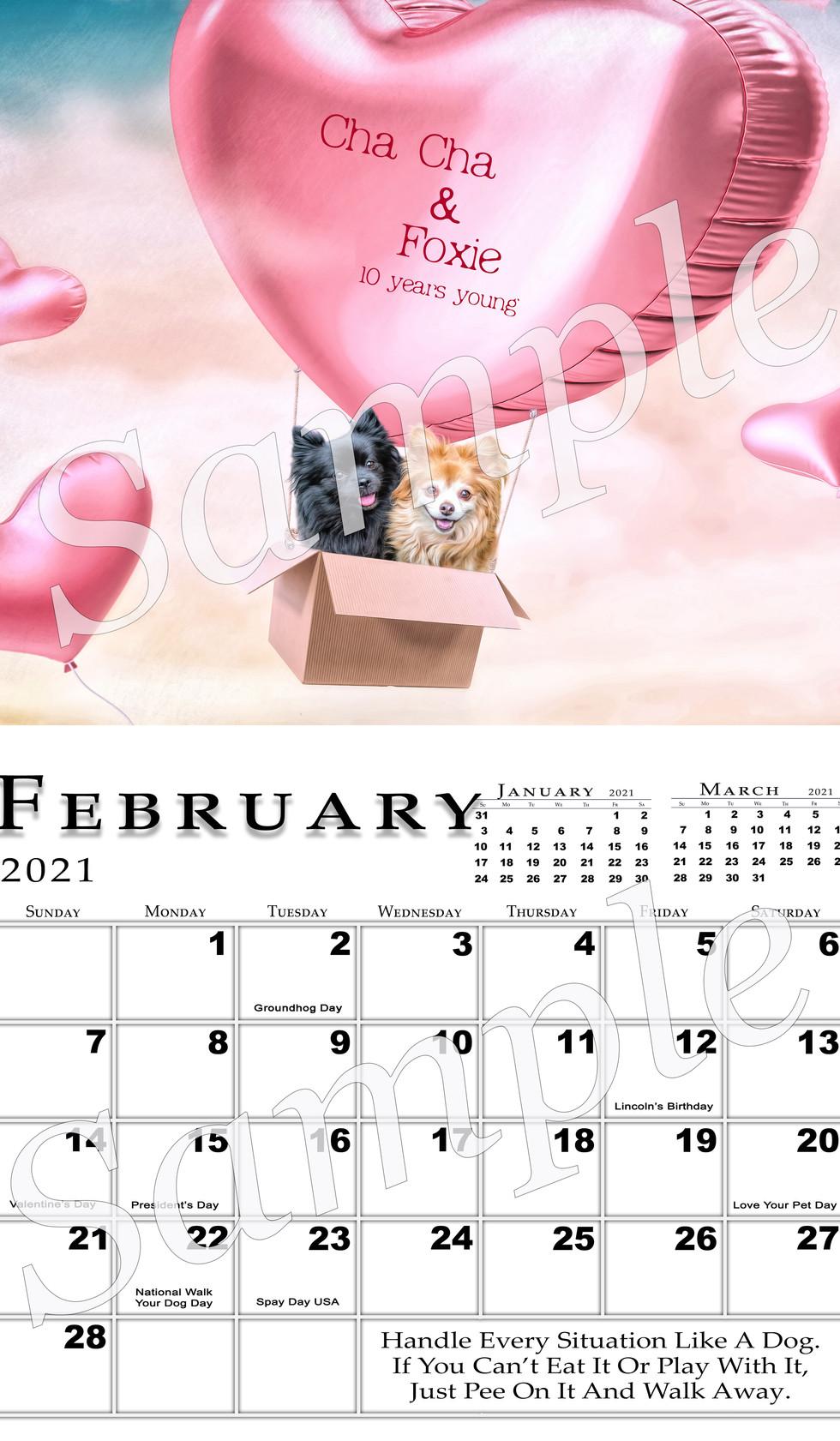 February 2021 Full Page Sample.jpg
