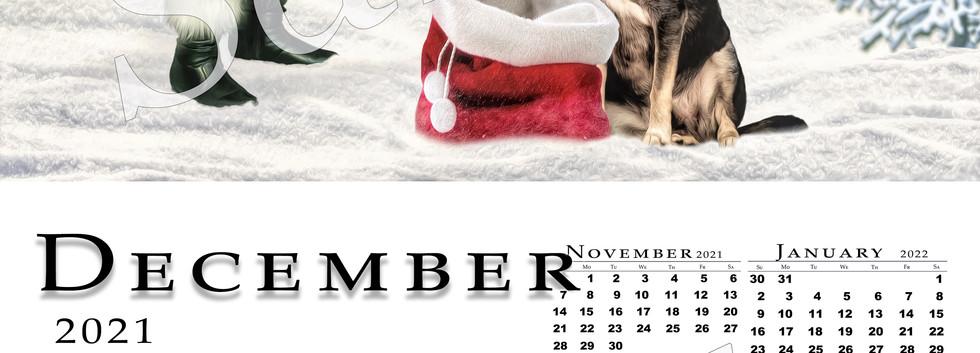 December 2021 Full Page Sample.jpg