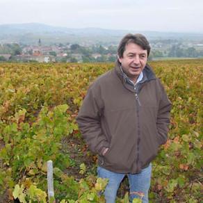 Domaine Jean Foillard - 讓你重新愛上薄酒萊(Beaujolais)