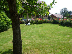 natürlicher Garten