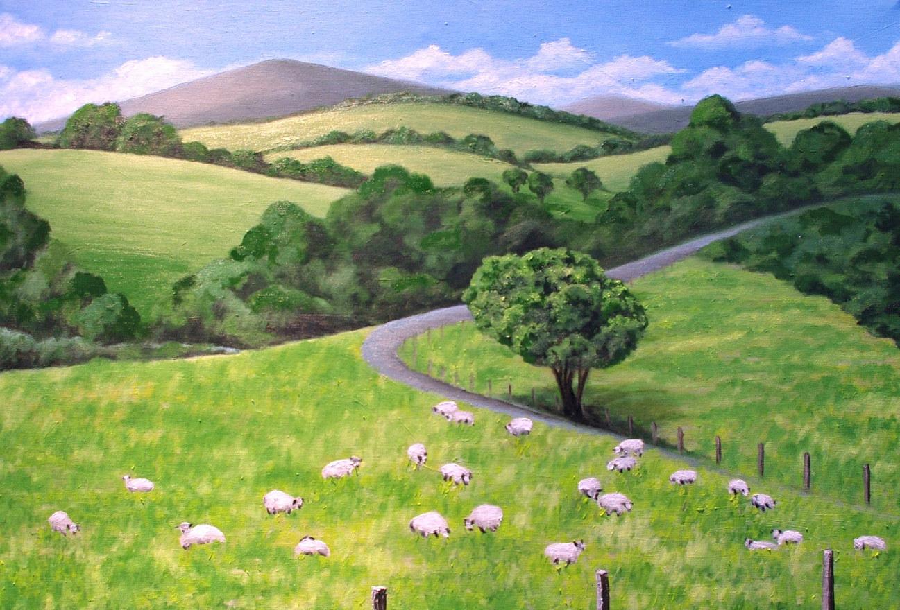 Border Sheep