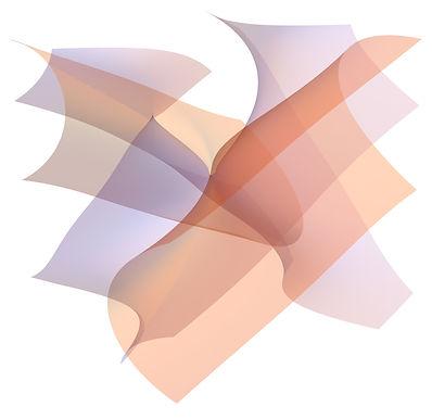 Discriminant surfaces 1.jpg