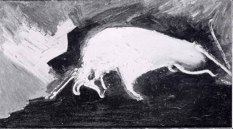 Toro - 1969 - 69x45cm