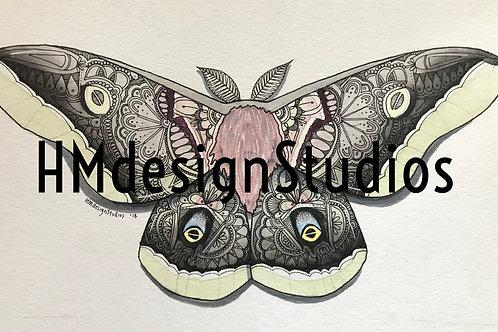 Polyphemus Moth PRINT Watercolor and Pen & Ink by Haylee McFarland