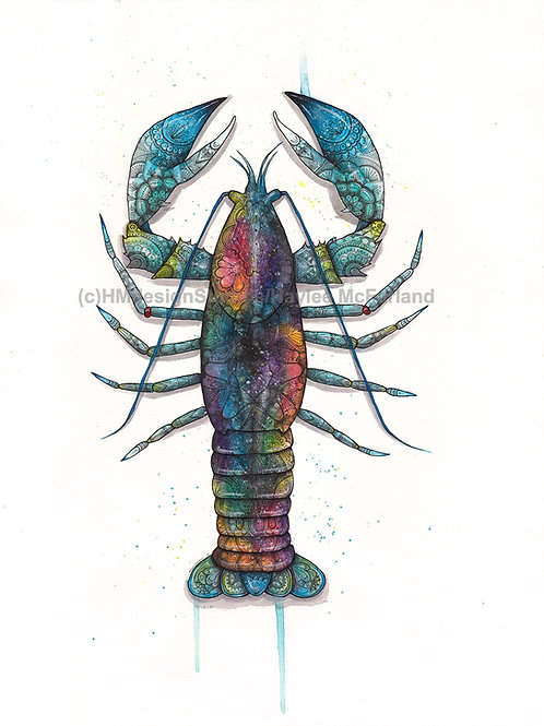 LIMITED EDITION PRINT Cosmic Lobster, Watercolor, Pen & Ink by Haylee McFarland