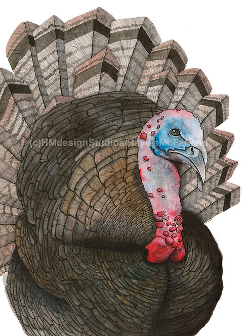 Turkey ORIGINAL, Watercolor and Pen & Ink, by Haylee McFarland