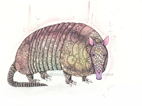 Peachy Armadillo Print, Watercolor and Pen and Ink by Haylee McFarland
