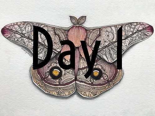 Emperor Gum Moth ORIGINAL Watercolor and Pen & Ink by Haylee McFarland