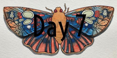 OrnateDusk-flat Redeye MothORIGINAL Watercolor & Pen & Ink by Haylee McFarland