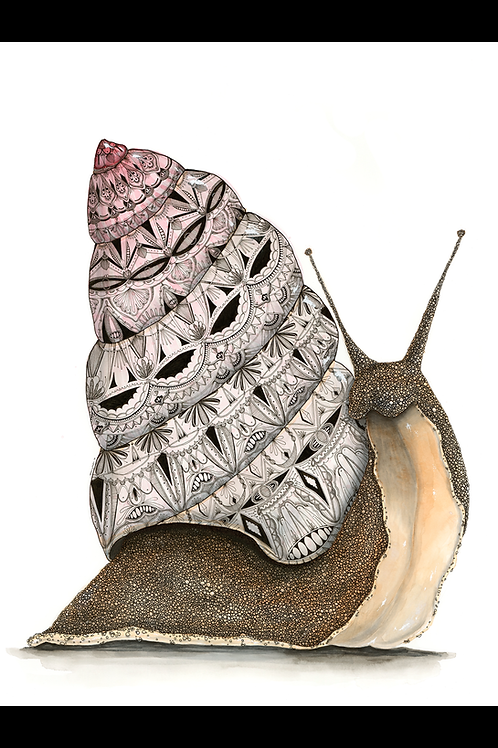 Pink Snail LIMITED EDITION PRINT, Watercolor, Pen&Ink by Haylee McFarland