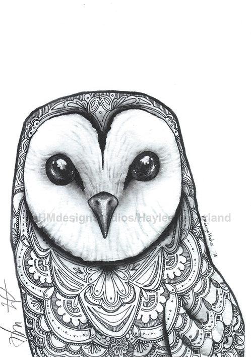 Barn Owl Print, Watercolor and Pen & Ink, by Haylee McFarland