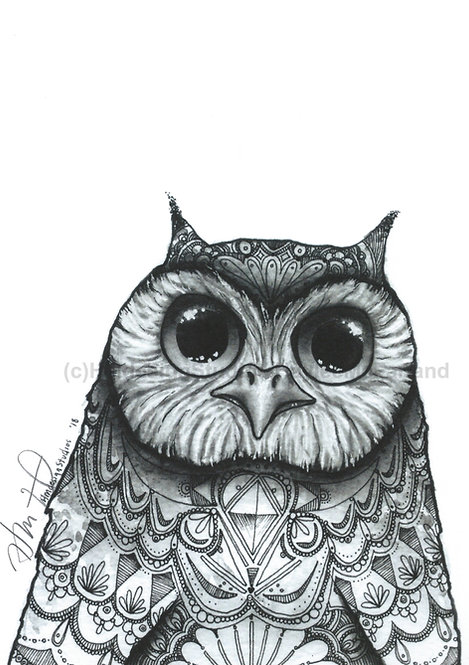 Big Eyed Owl Print, Watercolor and Pen & Ink, by Haylee McFarland
