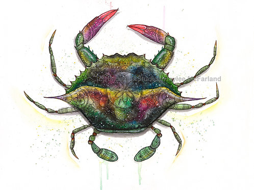 LIMITED EDITION PRINT Cosmic Crab, Watercolor and Pen & Ink by Haylee McFarland