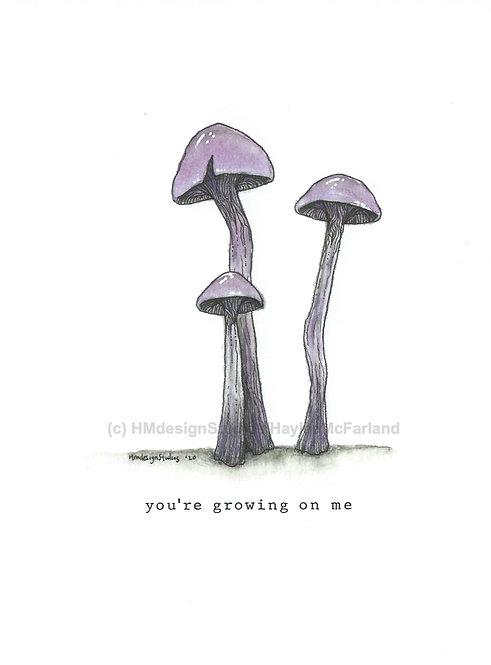 Cortinarius Violaceus Mushroom Greeting Cards, Watercolor Pen & Ink H. McFarland