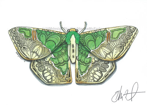 Blistered Emerald Moth PRINT Watercolor and Pen & Ink by Haylee McFarland