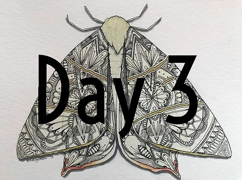 Swallow-Tailed Moth ORIGINAL Watercolor and Pen & Ink by Haylee McFarland