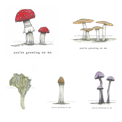 Mushroom Collection Greeting Cards, Watercolor and Pen&Ink by H.McFarland