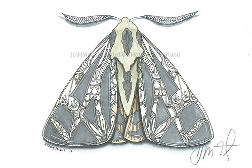 Tiger Moth PRINT Watercolor and Pen & Ink by Haylee McFarland