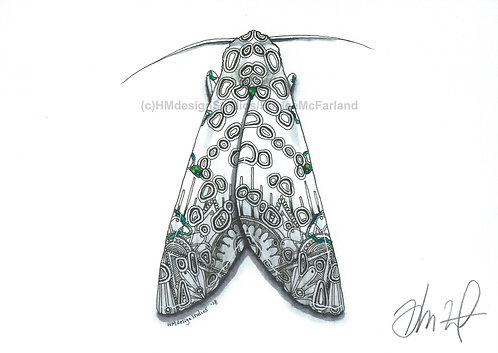 Giant Leopard Moth PRINT Watercolor and Pen & Ink by Haylee McFarland