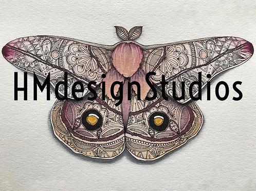Emperor Gum Moth PRINT Watercolor and Pen & Ink by Haylee McFarland