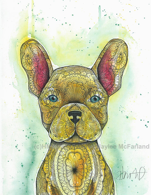 Adorable Frenchie Print, Watercolor and Pen & Ink by Haylee McFarland