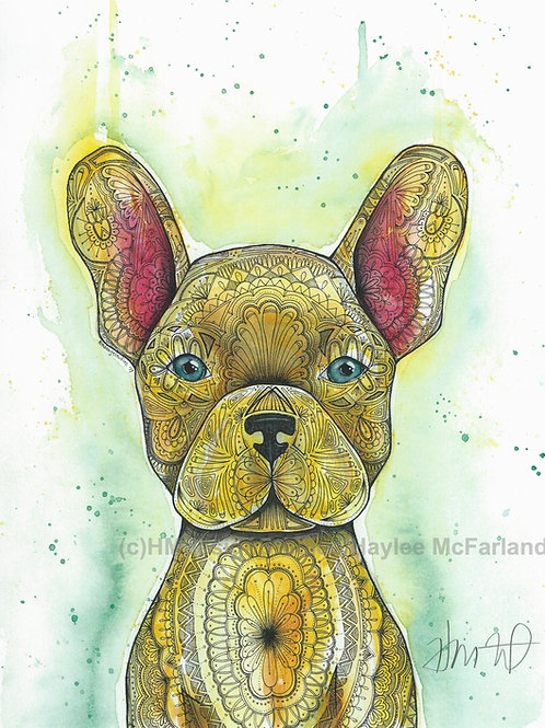 Yellow Frenchie ORIGINAL, Watercolor and Pen & Ink by Haylee McFarland