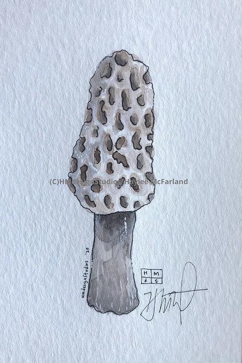 Mushroom Mini ORIGINAL, Watercolor and Pen & Ink by Haylee McFarland