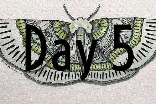 Lotaphora Admirabilis Moth ORIGINAL Watercolor and Pen & Ink by Haylee McFarland