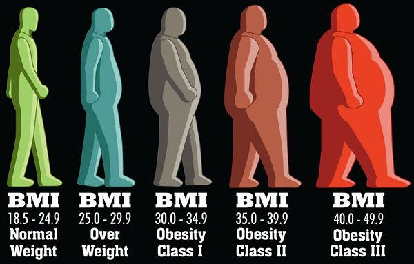 Body Mass Index (BMI) Comparison