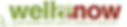 wellnowmagazine logo.PNG