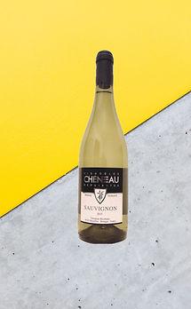 sauvignon vignobles chéneau bretagne vins blancs