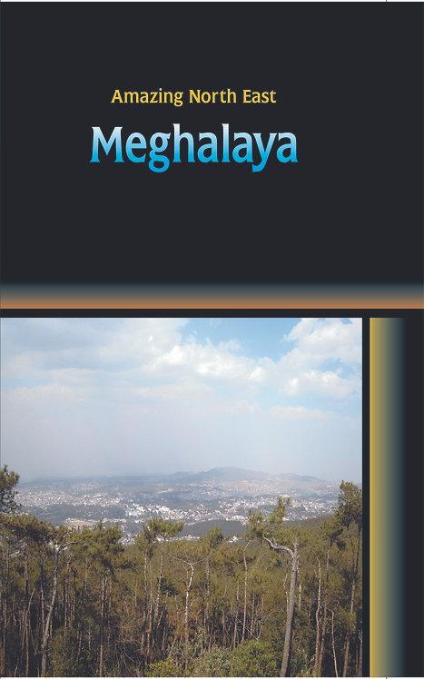 Amazing North East-Meghalaya