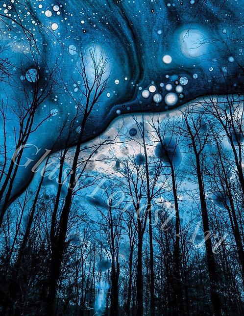 Cobalt Forest