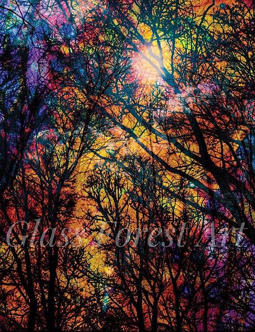 Branch Maze