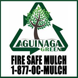 Aguinaga.jpg