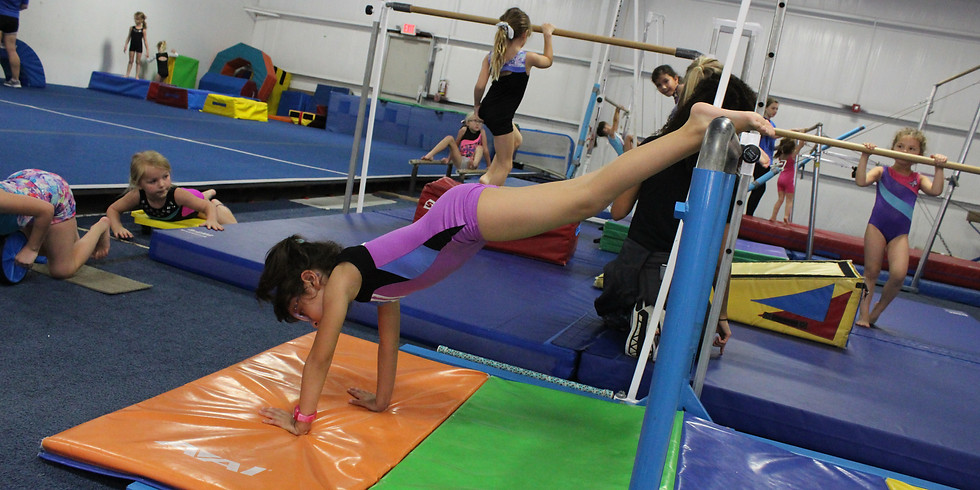 Handstand Clinic (Ages 3-4)