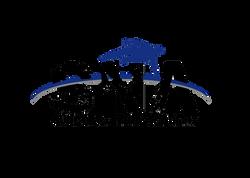 Ninja Logo PNG