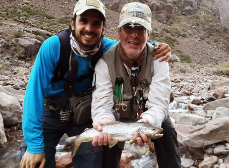 Reporte de Pesca AºPicheuta