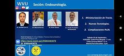 Sesión de Endourologia