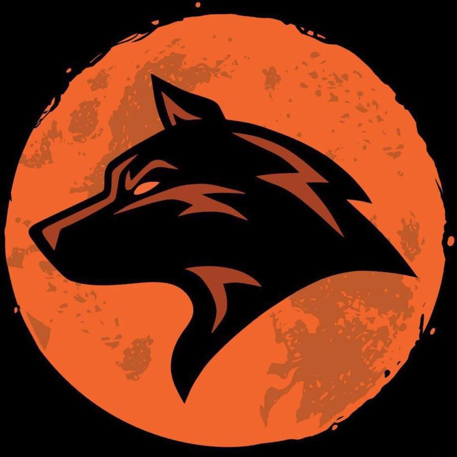 Moondogz logo